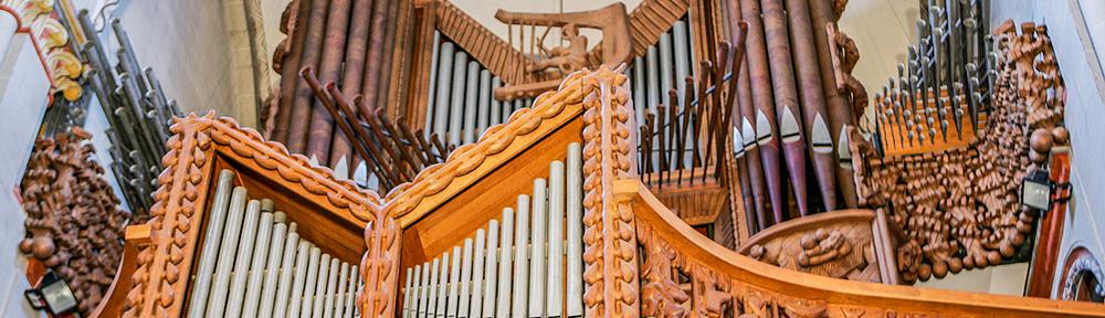 Verein der Freunde und Förderer der Musik am Bonner Münster e. V.